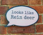 Looks Like Rein Deer funny photo booth prop