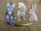 Kitten, Puppy and Rabbit photo booth signs
